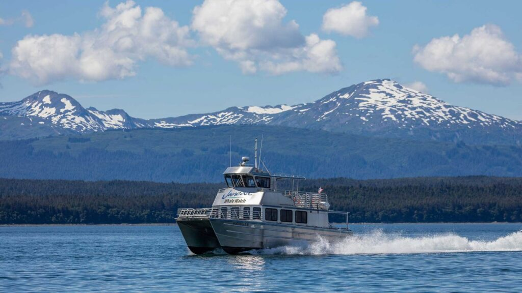 Juneautours_whalewatch1